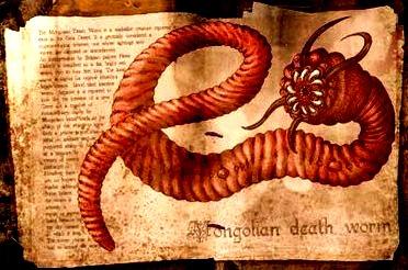 De ce este viermele periculos pentru oameni - Leac de helmint