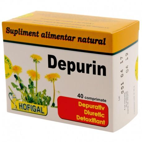 Complex detoxifiant natural hofigal