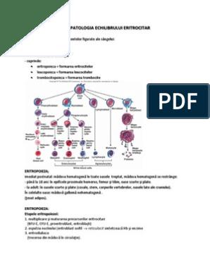 eritrocite parazite preparate pentru controlul viermilor și giardiei