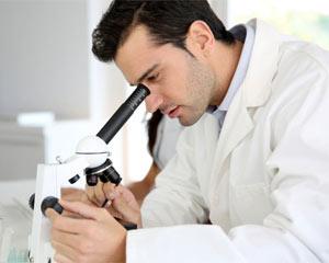 Terapia papilloma virus nell uomo