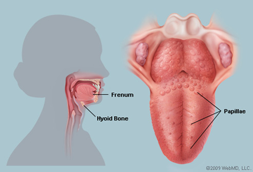 genital warts on tongue symptoms