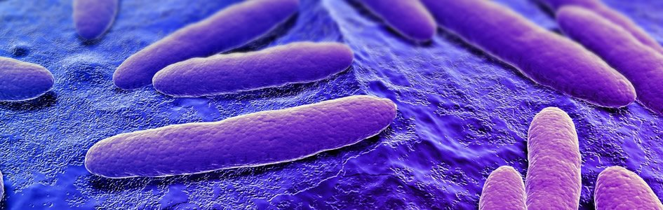 helix giardiasis