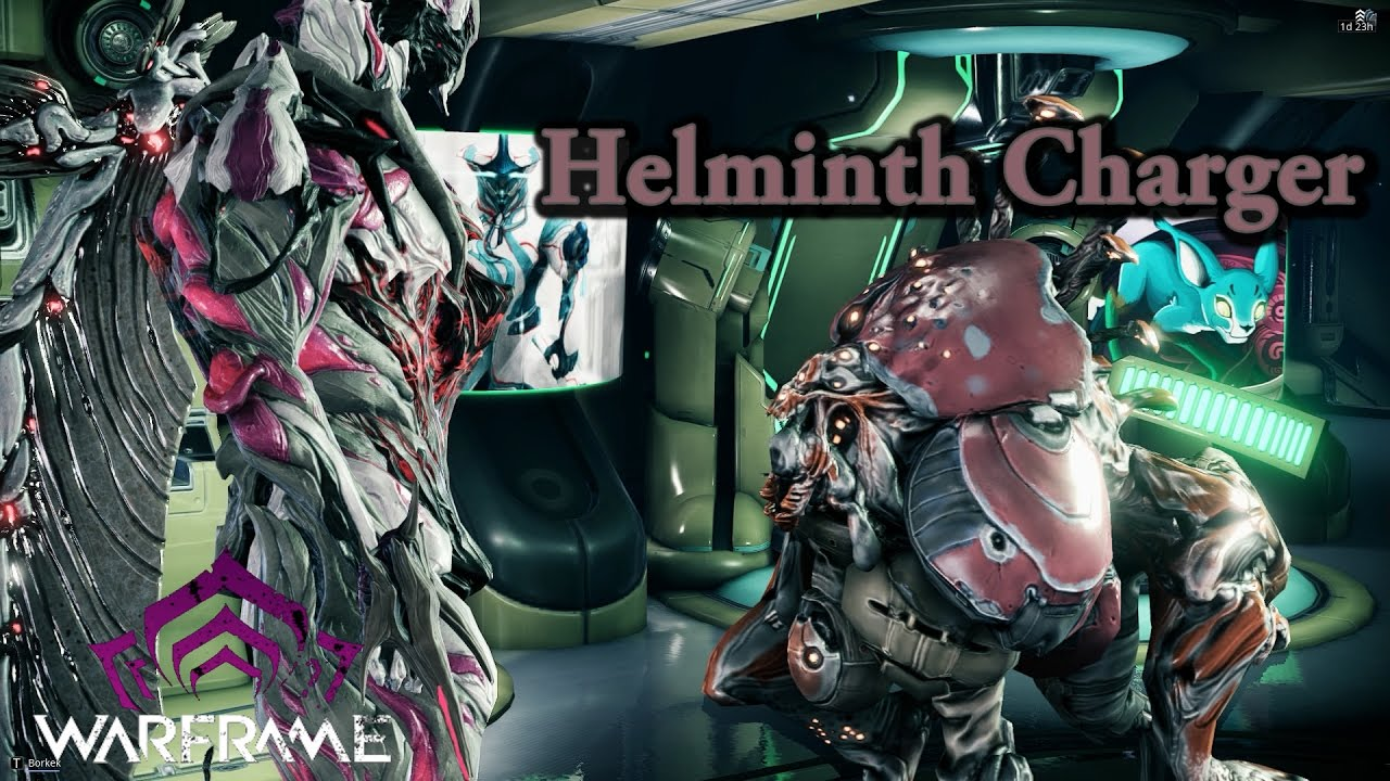 Helminth infection skin