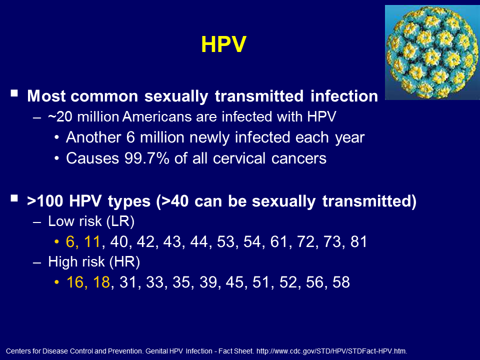 Human papilloma high risk. Hpv high risk facts