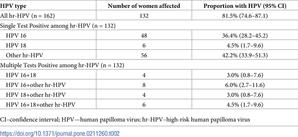 hpv high risk amplified probe