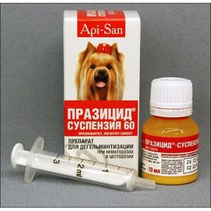 medicamente împotriva puricilor și helmintelor)