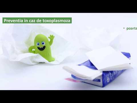 paraziti coccidieni ppt)