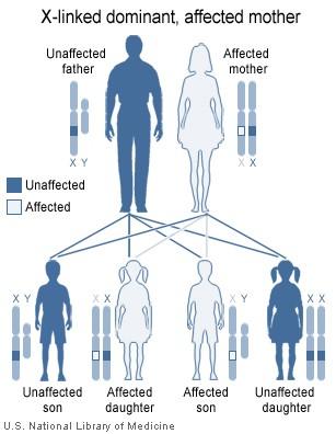 simptome de tenă în organism