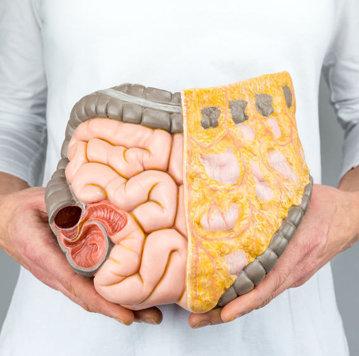 pastile de parazit la nivel uman