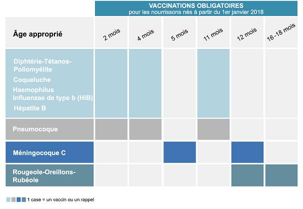Vaccin hpv pour homme - Le frottis et la vaccination anti-HPV papillomavirus in animals