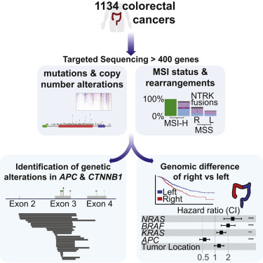 cancer genetic alteration