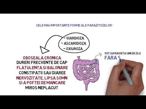 nutriție prin curățarea antiparazitară a organismului)