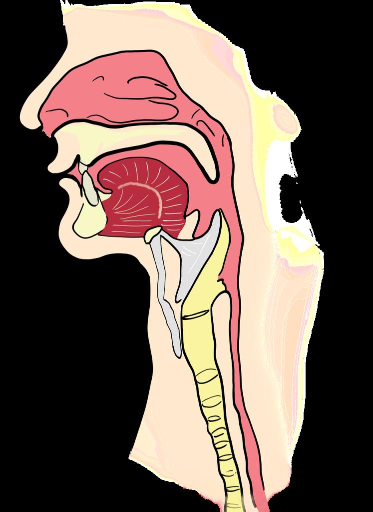 Neoplasmul laringian