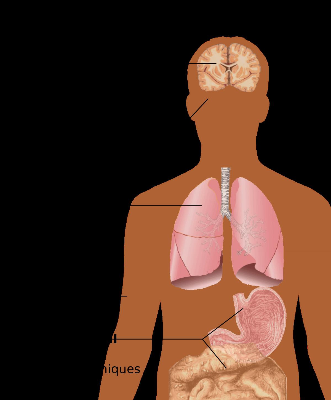 maladie du papillomavirus produse antiparazitare pentru piele