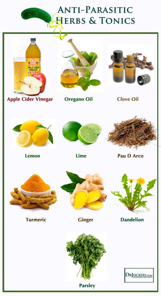 Complex natural din plante medicinale Detoxifierea colonulu : Farmacia Tei