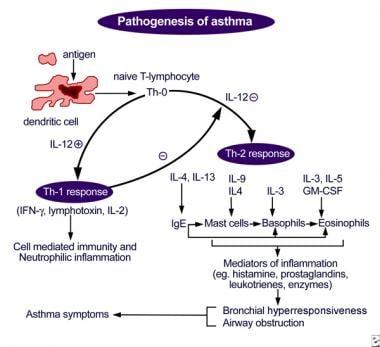 tratamentul rapid al enterobiozei)