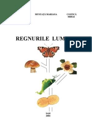 cnidaria platyhelminthes și planurile corpului annelida)