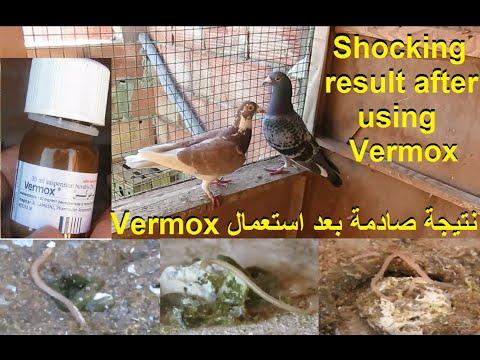 helmintox vai vermox)