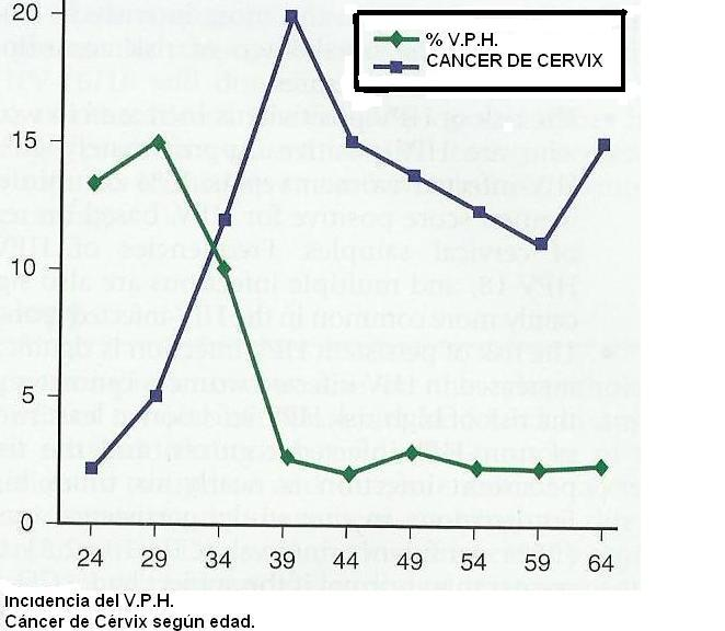 dna papillomavirus positivo)