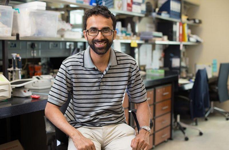 hiv and blood cancer ce medicamente ajută împotriva paraziților din organism