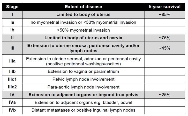 cancer endometrial tnm