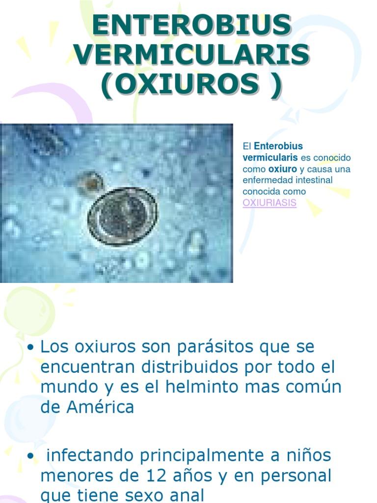 Oxiuros donde se encuentran Oxiuro desplazándose por el cuello uterino cancer col uterin depistage