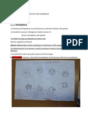 Zoonozele - Bolile transmise de animalele de companie - Cdc paraziți zoonotici