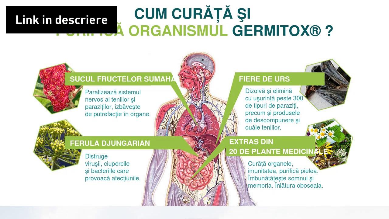 prevenirea și tratarea paraziților din corpul uman