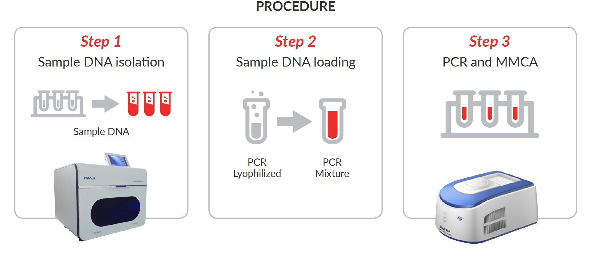 hpv high risk genotypes pcr