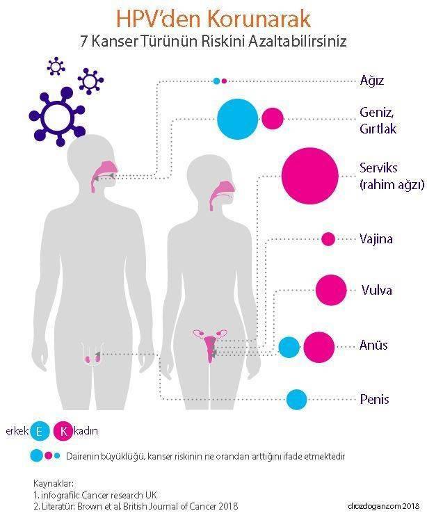 papilloma virus tip 16