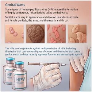 papilloma virus e recidivo)