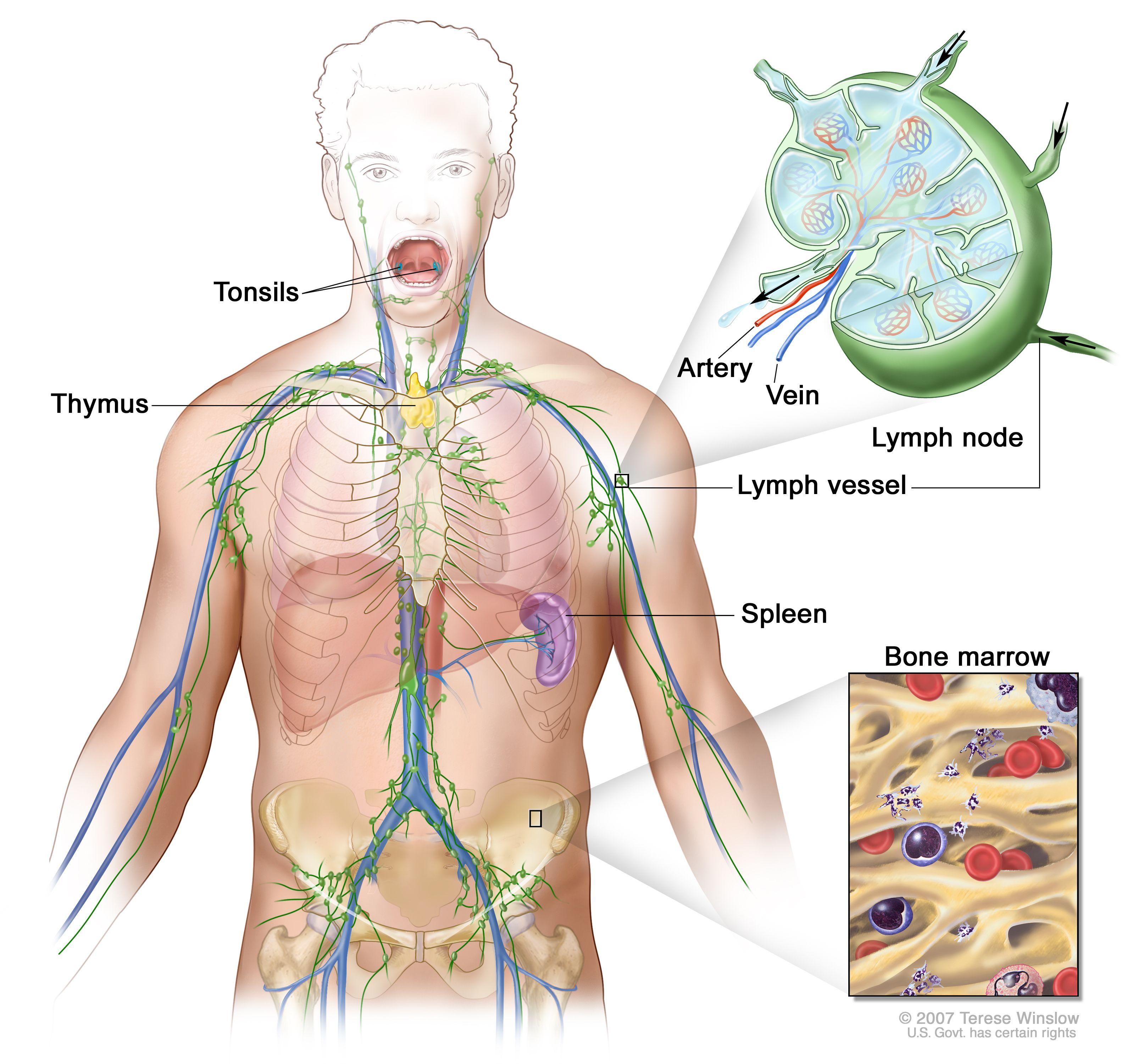 cancer hodgkin lymphoma treatment