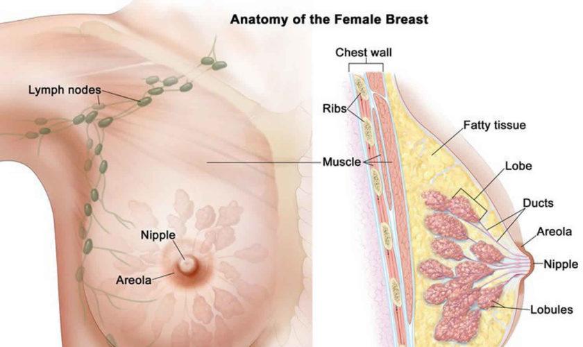 îndepărtarea condilomului pe colul uterin recenzii hpv genital warts treatment
