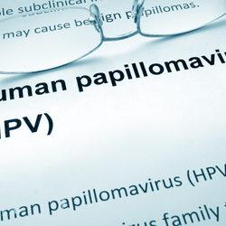 Papilloma virus ceppo Traducere