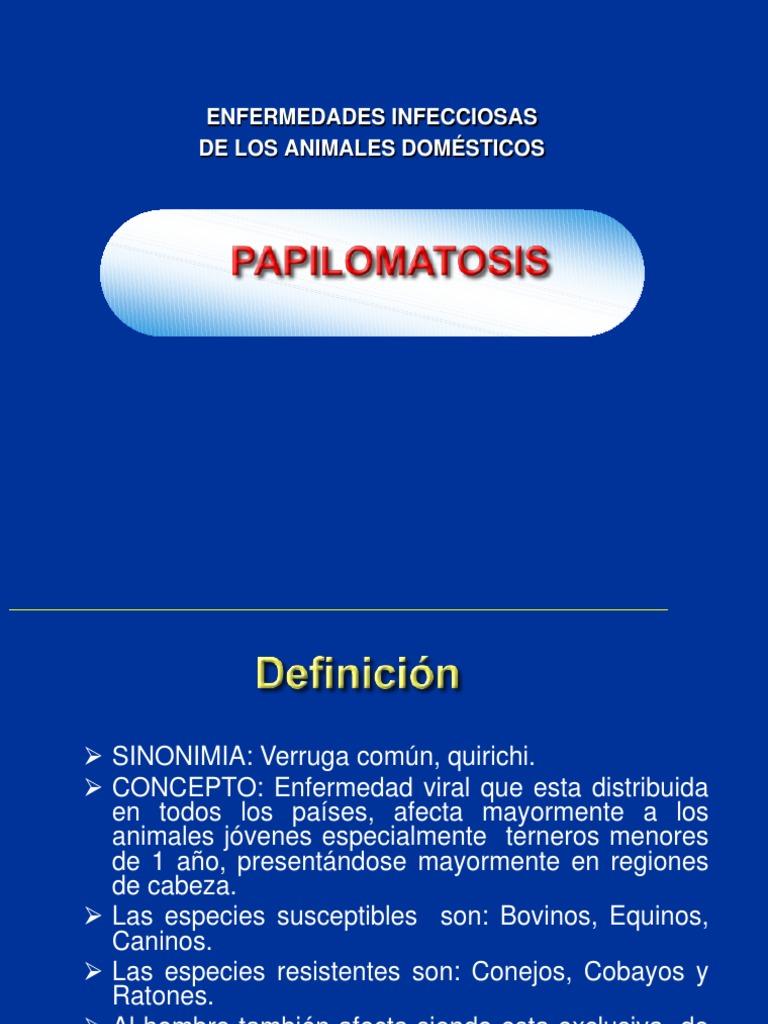 Tratamiento para papilomatosis equina