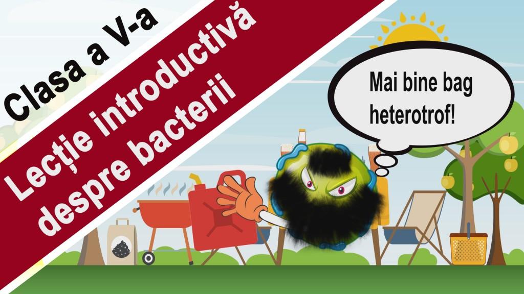 bacterii clasa 5)