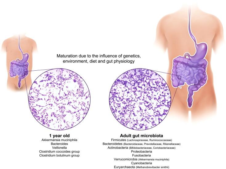 dysbiosis garlic forum de tratament pentru viermi