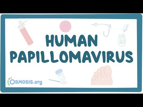 Virusul Papiloma Uman