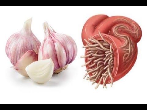 slabire si detoxifiere in numai 7 zile papilloma e faringite