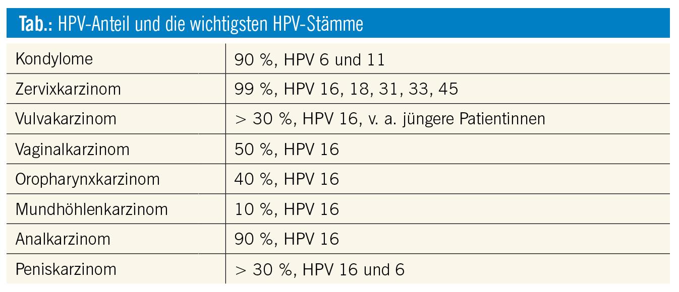 hpv high risk stamme papilom și viermi