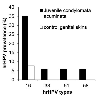 juvenile papilloma virus