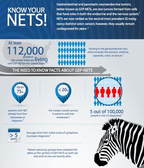 neuroendocrine cancer charity)