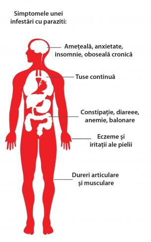 paraziti in corpul omenesc)