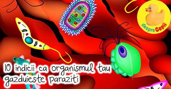 papilloma virus in gat