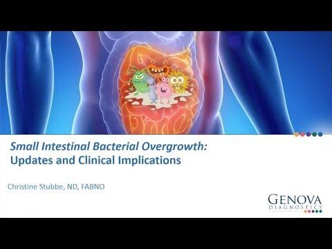 Sistemul imunitar – forta de aparare a organismului